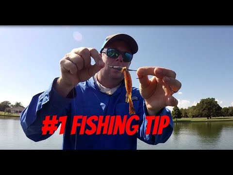 Best bass fishing tip: O-ring lure trick