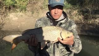 Рыбалка на реке Каратал лето 2017года, Алматинская область, сазан