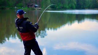 Та ты шо поклевка Это она рыба мечты Рыбалка на лесном озере