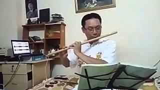 Bài ca đất phương nam. Sáo trúc Đinh Linh