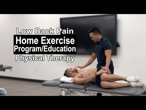 Physical Therapy Education for Low Back Pain | Part 4