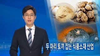 [뉴스데스크]두 마리 토끼 잡는 식품소재 산업-R (1…
