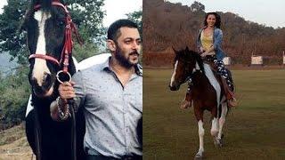 Iulia Vantur Rides Salman Khan's Horse | Bollywood News
