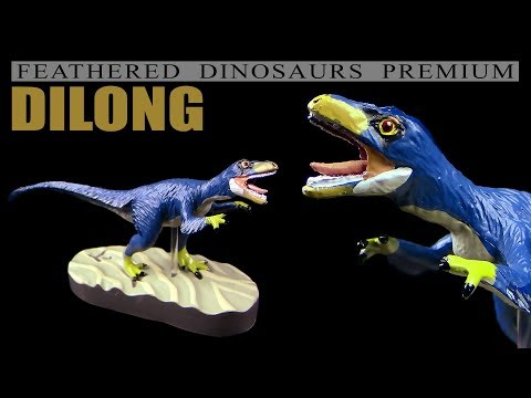 Colorata ® Dilong - Feathered Dinosaurs Premium - Unboxing Teil 6
