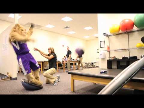 Sacramento Kings Mascot Slamson Get S Physical Therapy Youtube