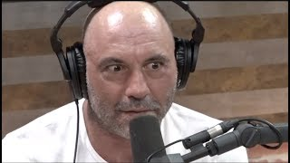 What Do Other Parents Think of Joe Rogan??