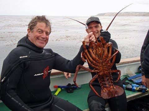October 2013 California Spiny Lobster Diving Salt Water Revival Dive Club