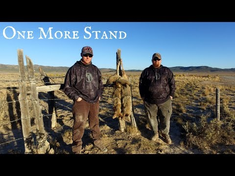 One More Stand Episode High Wind - Coyote Hunting