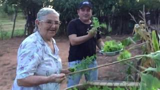 Francis Lopes - Mãe (Com imagens de sua mãe)