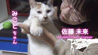 仙台の人気劇団「ア・レディーバードシアターカンパニー」http://ladybi...