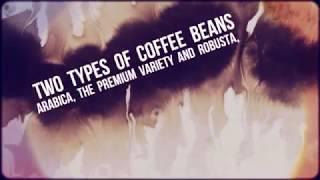 Gourmet Coffee - Are You A Gourmet Coffee Lover?