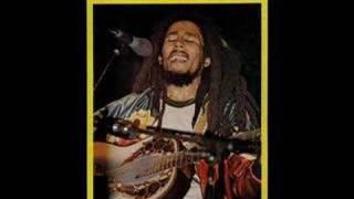 Bob Marley Chant Down Babylon demo