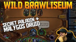 Wild Brawliseum - Secret Pally & Malygos Druid | Hearthstone