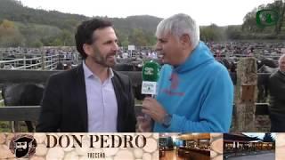 FERIA DE SAN MARTÍN EN TRECEÑO 2018 -  Occidental Cantabria Radio y TV