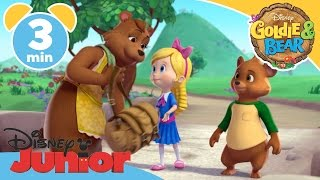 vuclip Goldie & Bear | The Troll Tamer | Disney Junior UK
