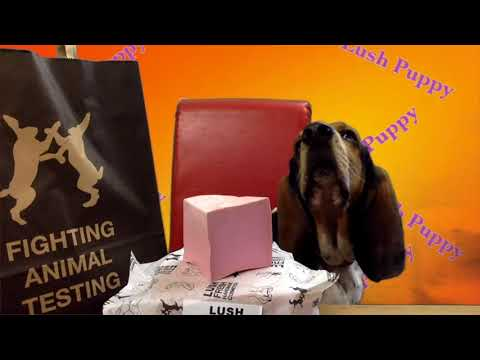 Boris Basset reviews Lush Rockstar Soap
