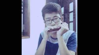 Wrecking Ball - Miley Cyrus (Harmonica cover)