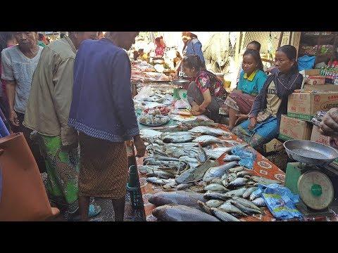 ลุยฝนในลาวใต้ EP70:ตลาดเช้าบ้านนากะสัง ตลาดขายปลาที่ใหญ่ที่สุดในสี่พันดอน  เมืองโขง แขวงจำปาสัก