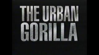 National Geographic: The Urban Gorilla (1992)