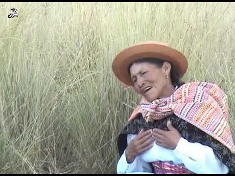 Teodora Hinostroza Cano COMUNERA DE HUASICANCHA, Orq.Folk Zorros Del Ande Y  AMANTES DEL CENTRO