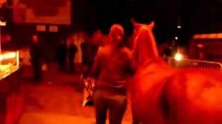Paarden vlak langs kermis - Paardenmarkt Hedel
