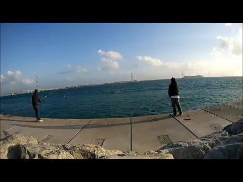 Al Reem Island 2 - Kami