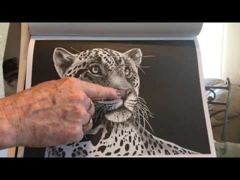 intricate-ink-animals-in-detail:-a-coloring-book-by-tim-jeffs