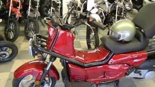 SSR ROWDY 150cc Scooter Chinese SCOOTER - FREE SHIPPING HONDA RUCKUS CLONE 150cc