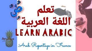 Learn Arabic/تعلم اللغة العربية / Arab Reportage in France/ watch,listen and analyze/Ananas channel