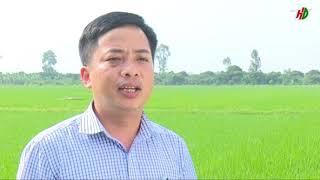 KHCN SO 4 PHONG TRU SAU BENH HAI LUA