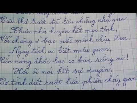 """Chữ """"tình"""" trong ĐOẠN TRƯỜNG TÂN THANH - NGUYỄN DU"""