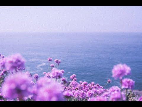 HIRAETH [ Wave - Chill Beats Mix ]