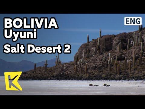【K】Bolivia Travel-Uyuni[볼리비아 여행-우유니]소금사막 2- 물고기 섬/Fish Island/Isla Incahuasi/Salt Desert 2