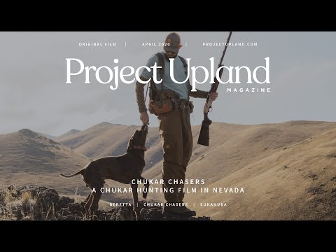Chukar Hunting With Chukar Chasers Nevada - A Project Upland Original Film