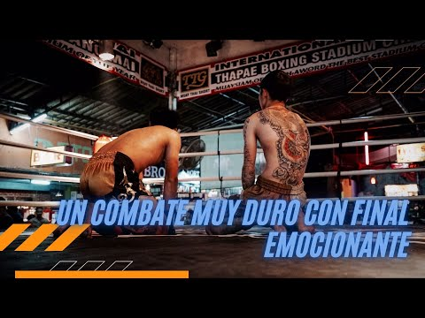 Kick Boxing profesional (Spain vs Brasil)