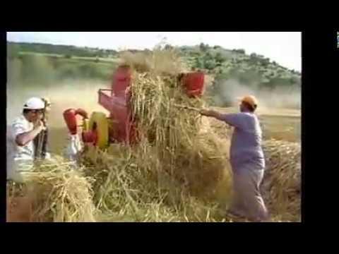 Patoz Çekme videosu
