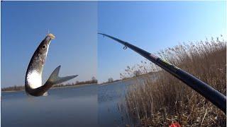 КЛЁВ КАЖДУЮ СЕКУНДУ Рыбалка весной 2020 Ловля на поплавочную удочку Рыбалка 2020 в Апреле