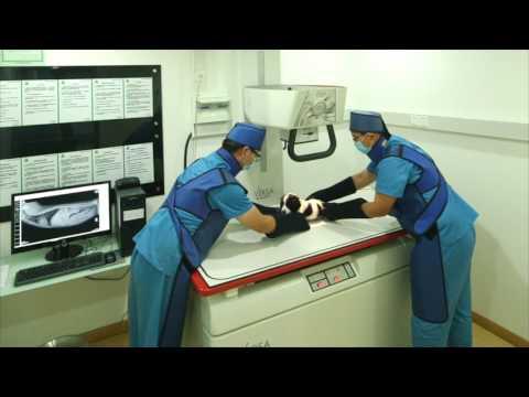 petzoo pet hospital Shanghai China