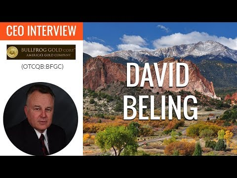 Bullfrog Gold CEO | We're undervalued compared to our peer companies