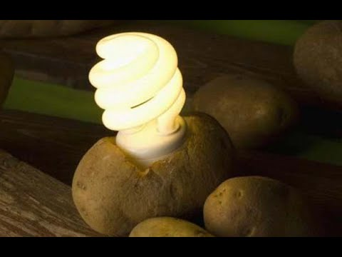 How to get electricity from potato 🔴🔴🔴 TUTORIAL