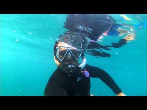Snorkeling @ Sidab Oman