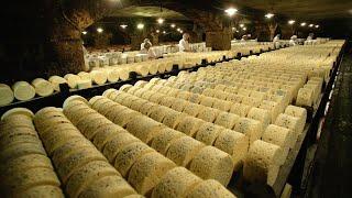 Сыром и хлебом жив армянин: как производят мацони? - YouTube