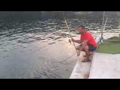 Ribolov plovkom, Cipol10 08 16