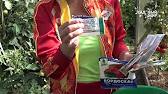 Брунька - надійний захист рослин!!!! - YouTube