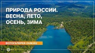 Природа России. Весна, лето, осень, зима - Фотогалерея oum.ru