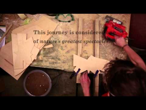 The Making of our Monarch Butterfly-inspired windows | Anthropologie