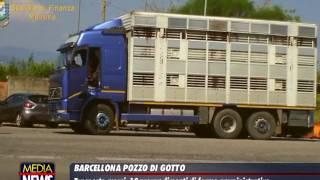 Barcellona Pozzo di Gotto, 8 imprese abusive scoperte nel trasporto merci