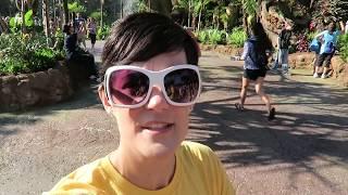 Disney World Vlog May 2017 | Pandora OPENING WEEKEND Brings Tears! 😭 | (Episode 92)