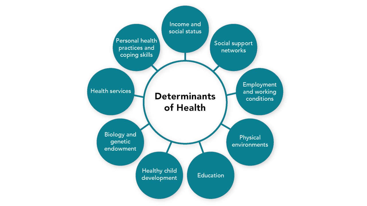 education as a social determinant