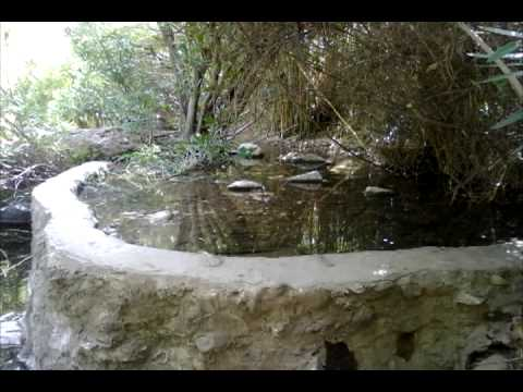 Homenaje barranco blanco m sica un par de pares youtube for Banos hediondos de barranco blanco